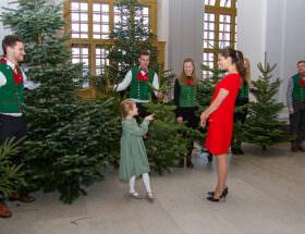 Prinsessan Estelle och kronprinsesasn Victoria tar emot julgranar på Kungliga slottet